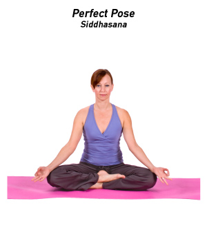 Yoga_PerfectPose_300x350