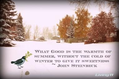 winter_sweetness-e1356671876471